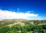 APN 201-35-008b West Ridge facing NE
