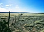 APN 201-81-225 fence
