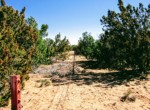 APN 205-13-067 fence along Eastern Border