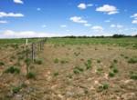 APN 206-05-125 Fence south border