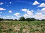 APN 206-05-125 Juniper grove (2)