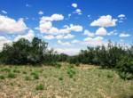 APN 205-74-007 West view (4)