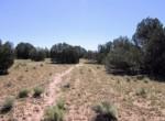205-13-043B Cattle Trail East