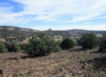 APN 201-35-007 SE view