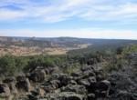 APN 201-35-007 SE views
