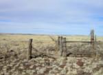 107-63-002h Fenceline facing north near western border