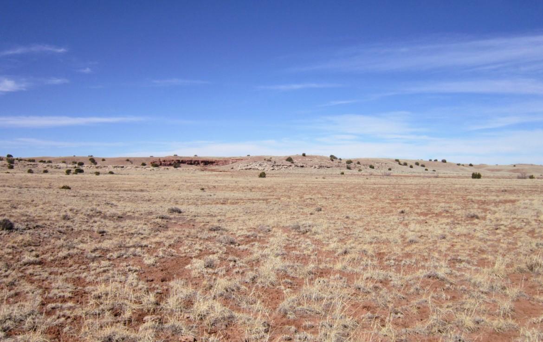 North view from NE corner