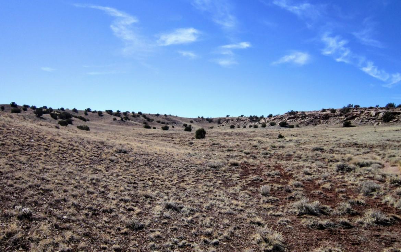 Terrain facing southwest from center