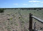 108-56-148 Fenceline along western border facing south