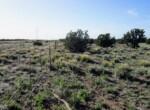 108-56-154 Fenceline near center southern border facing west