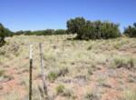 207-65-002 Fenceline along northern border facing east