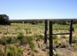 207-65-002 Fenceline along northern border facing west