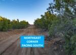 NE Corner South